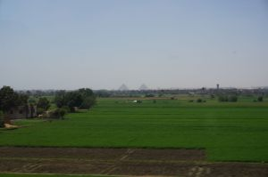 Fields and Pyramids